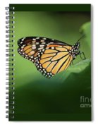 Monarch On Milkweed Spiral Notebook