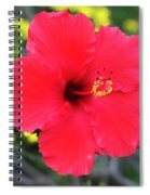 Montecito Perfection Spiral Notebook