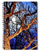 Moonshine 4 Spiral Notebook