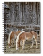 Horses By The Barn Sugarbush Farm Spiral Notebook