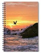 Morning Flight Serenity Spiral Notebook