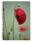 Morning Poppy Flower Spiral Notebook