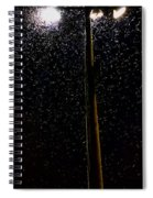 Mosquitoes Spiral Notebook