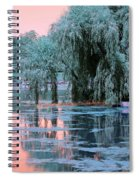 Mother Willow Infrared Spiral Notebook