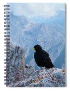 Mountain Jackdaw Spiral Notebook