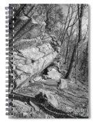 Mountain Trail Spiral Notebook