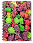 Multi Mini Hot Pepper Variety Spiral Notebook