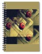 Multiplication Spiral Notebook