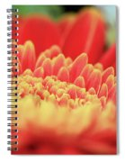Mum Flower Spiral Notebook