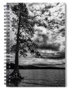 My Favorite Tree Black And White Spiral Notebook