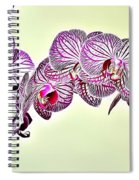 Naturalness And Flowers 37 Spiral Notebook