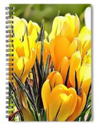 Naturalness And Flowers 56 Spiral Notebook