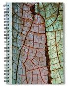 Nature Or Nurture Spiral Notebook