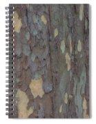 Natures Beautiful Patterns Spiral Notebook