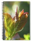 New Chokecherry Leaves Spiral Notebook