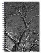 Niagara Falls Winter Textures Spiral Notebook