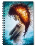 Nirvana Spiral Notebook