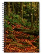Northside Of Mount Greylock At Spiral Notebook