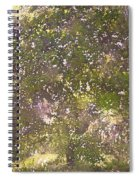 Oaks 26 Spiral Notebook