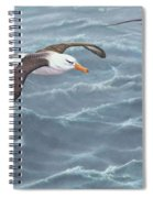 Ocean Flight Seabirds By Alan M Hunt Spiral Notebook