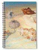 Ocean Shells Spiral Notebook