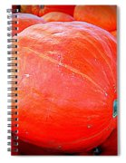 October Pumpkin Spiral Notebook