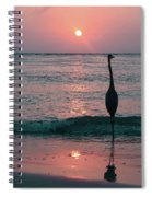 Old Fashioned  Spiral Notebook
