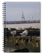 Old New Jersey Pier Statue State Park II Spiral Notebook