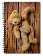 Old Teddy Bear Hanging On The Door Spiral Notebook
