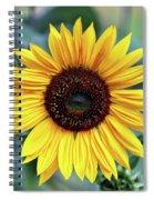 One Bright Sunflower Spiral Notebook