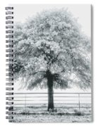 One Foggy Morning  Spiral Notebook