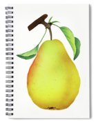 One Yellow Juicy Pear Spiral Notebook