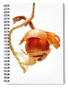 Onion On A White Background Spiral Notebook