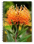 Orange Protea Spiral Notebook