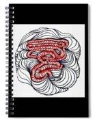 Organic Maze Spiral Notebook