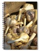 Organic Garlic Spiral Notebook