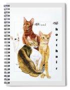 Oriental Shorthair Spiral Notebook