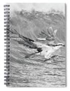 Osprey The Catch Bw Spiral Notebook