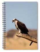 Osprey Waiting For Fish Spiral Notebook