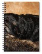 Our Singleton Spiral Notebook