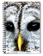 Owls Mascot Spiral Notebook