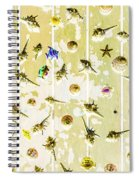 Pacific Planks Spiral Notebook