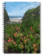 Paintbrush And Ice Plant, Garrapata Spiral Notebook