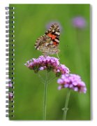 Painted Lady Butterfly Beauty Spiral Notebook