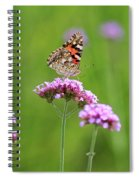 Painted Lady Butterfly In Green Field Spiral Notebook
