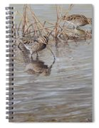 Pair Of Snipe By Alan M Hunt Spiral Notebook