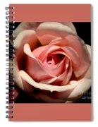 Pale Pink Rose Spiral Notebook