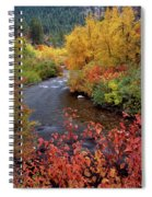 Palisades Creek Canyon Autumn Spiral Notebook