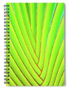 Palms And Fronds - Hawaii Spiral Notebook