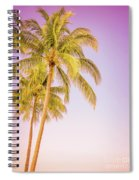 Palm Trees And Pink Sky Spiral Notebook